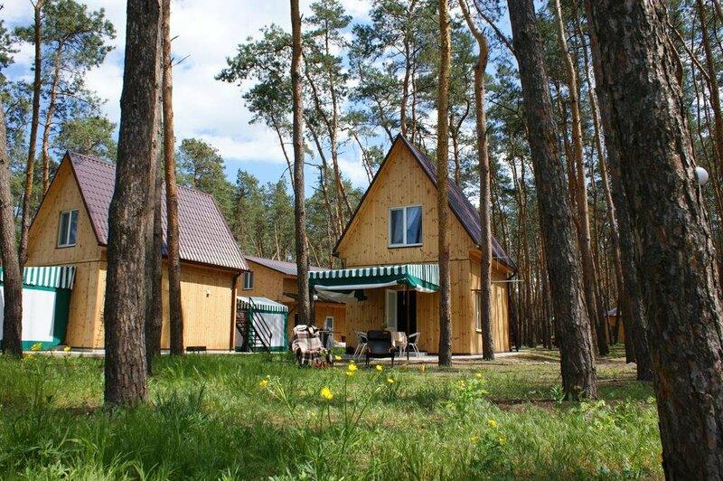 Лес на Самаре