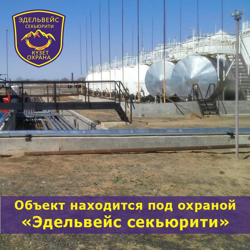 охранное предприятие — Эдельвейс секьюрити — Актобе, фото №4