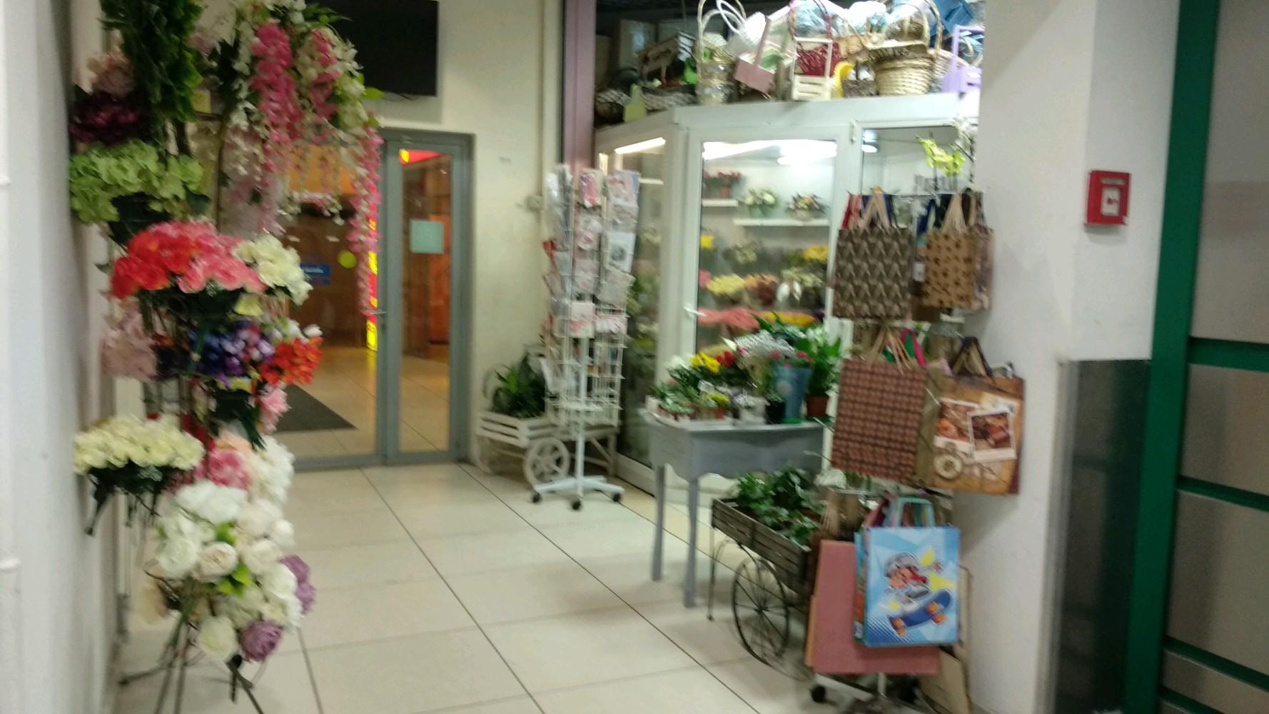 Магазин цветы м домодедовская, растения купить украине