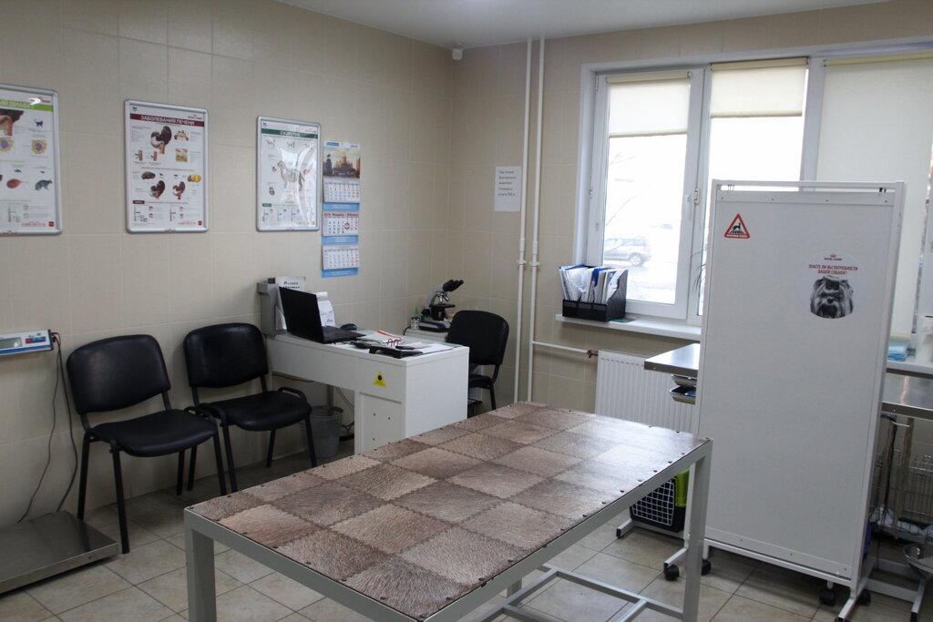 ветеринарная клиника — Айболит-99 — Санкт-Петербург, фото №2