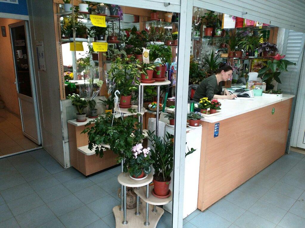 Цветной магазин цветов архангельск, букеты нежно розовый