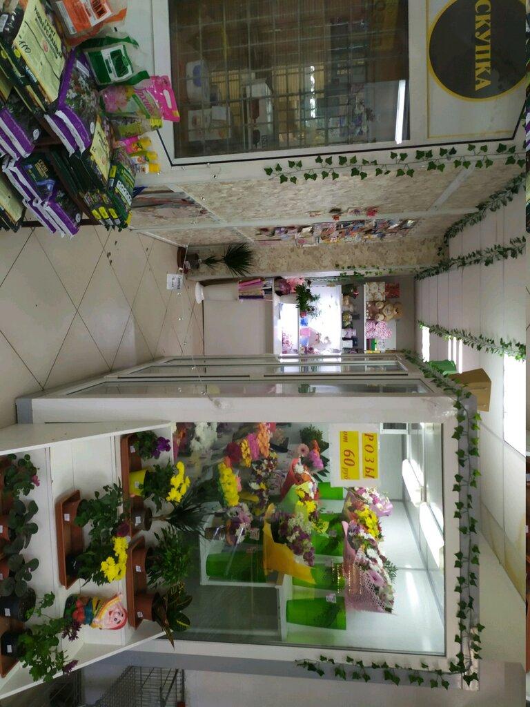 Цветов саратов, магазин цветы улица карпинского 2016