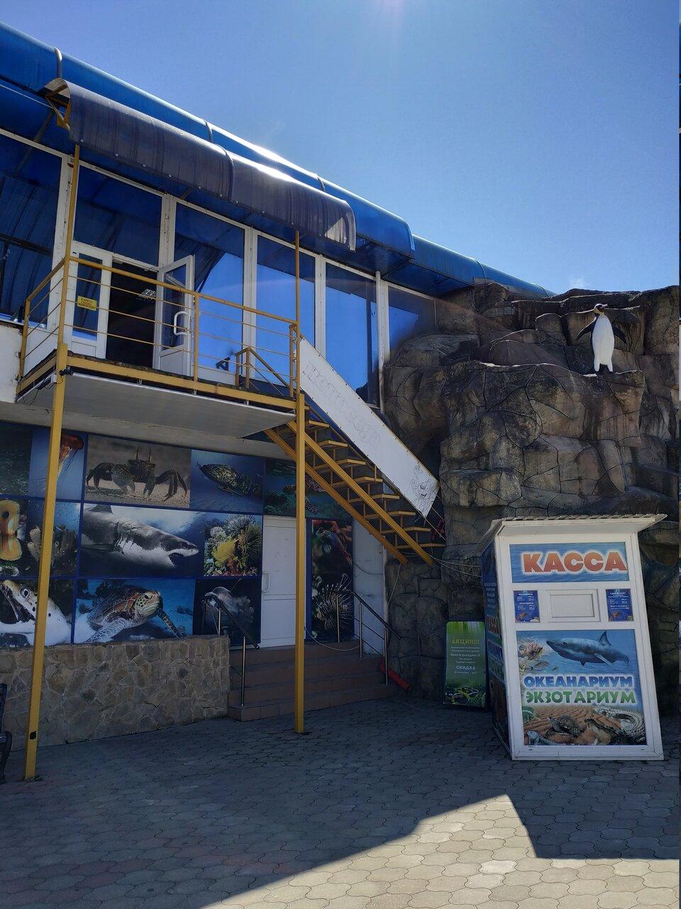 океанариум в лазаревском картинки аквапарке