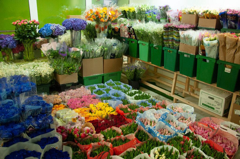 Купить цветы в москвы вао, трав