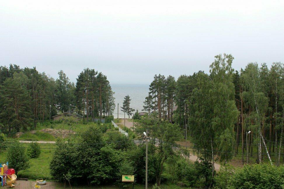 создали пески ленинградская область фото ней ещё