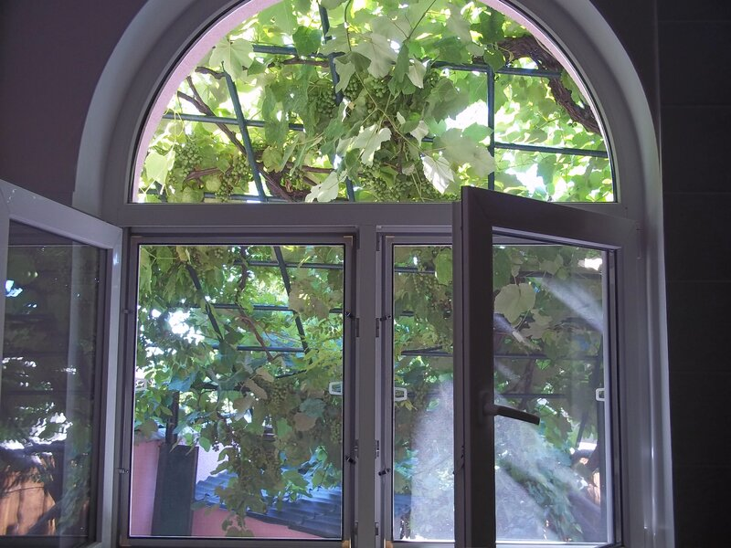 Виноградный дворик