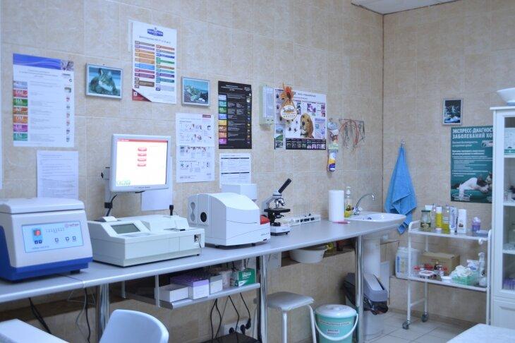 ветеринарная клиника — Ветеринарная клиника ЗооМедик — Москва, фото №2