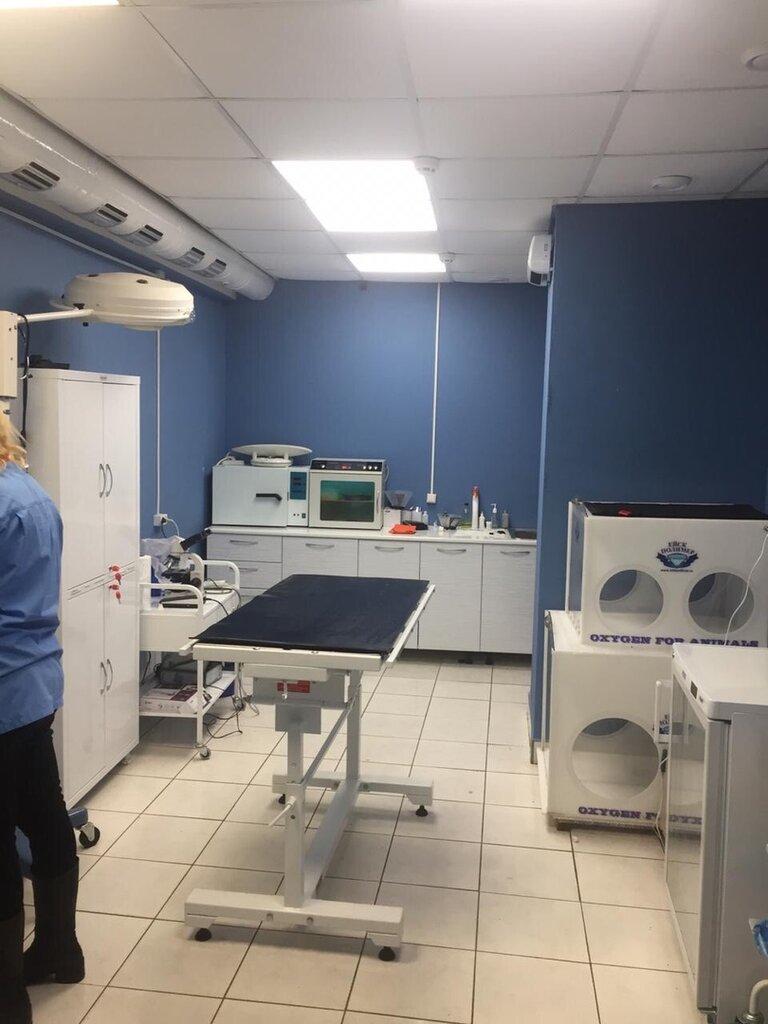 ветеринарная клиника — Ветко — Тула, фото №5