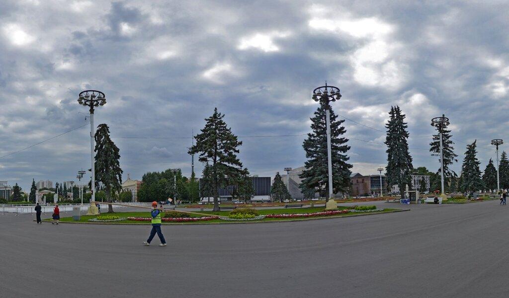 Панорама curling club — Кёрлинг — Москва, фото №1