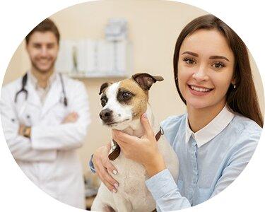 ветеринарная клиника — Ветеринарная клиника Зоомедик — Москва, фото №1
