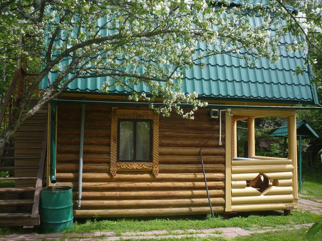 появлялся база отдыха в кемеровской области фото комнатных растений