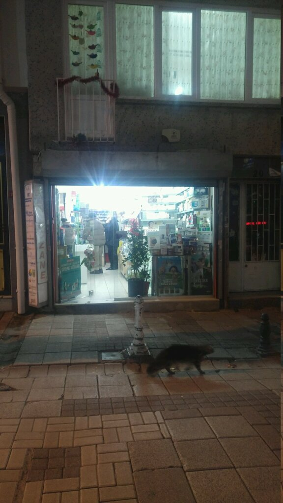eczaneler — Mercan Eczanesi — Bakırköy, photo 1