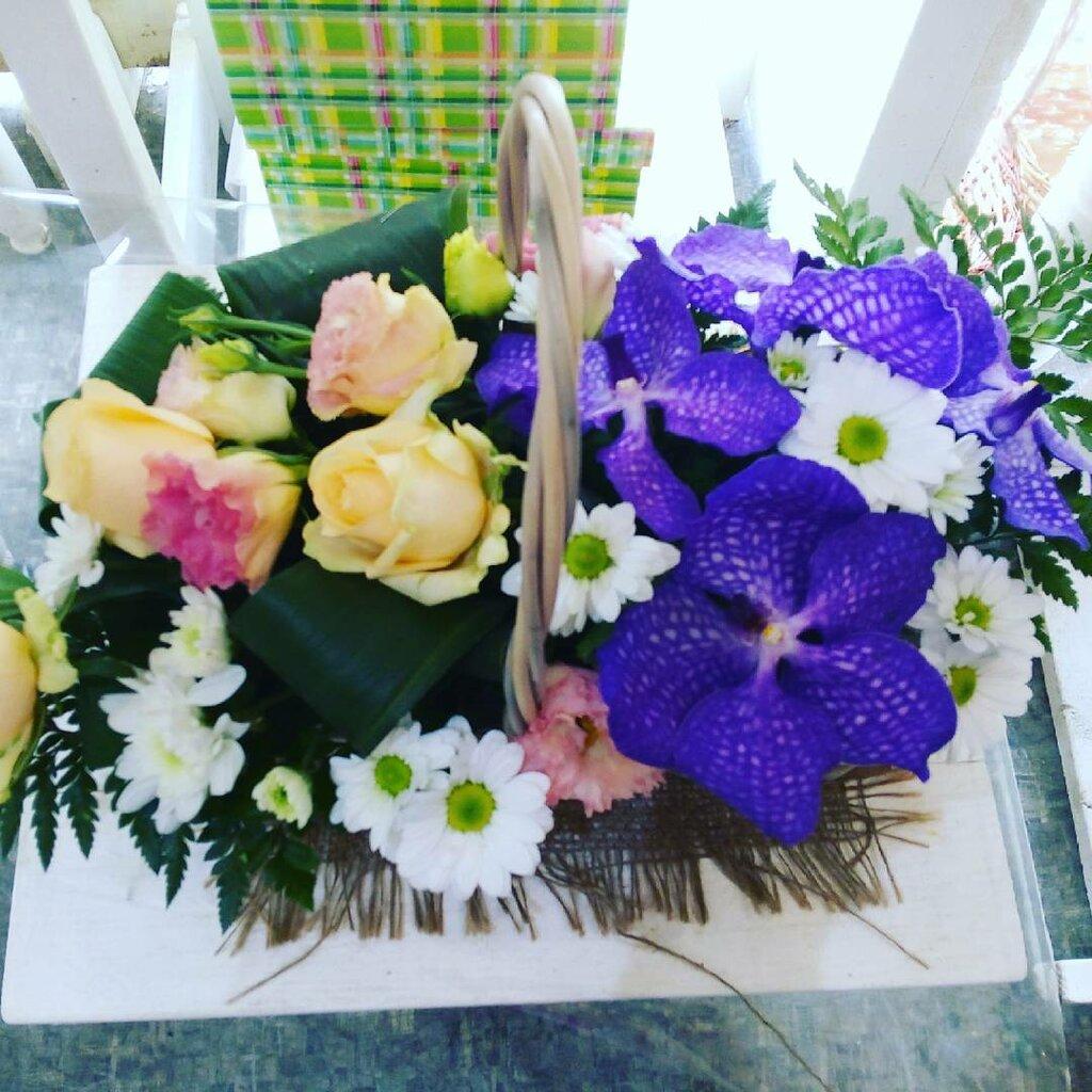 интернет магазин цветы поволжья семейства