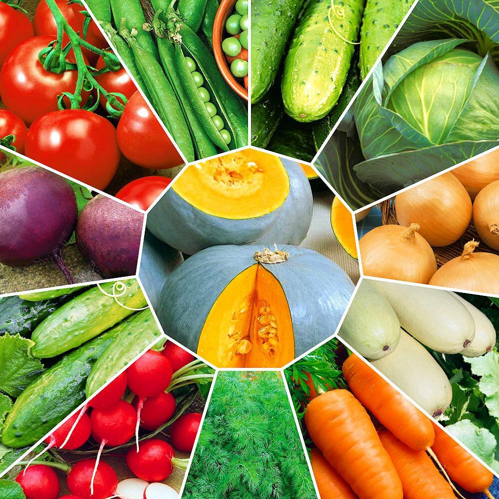 Картинки овощей семян
