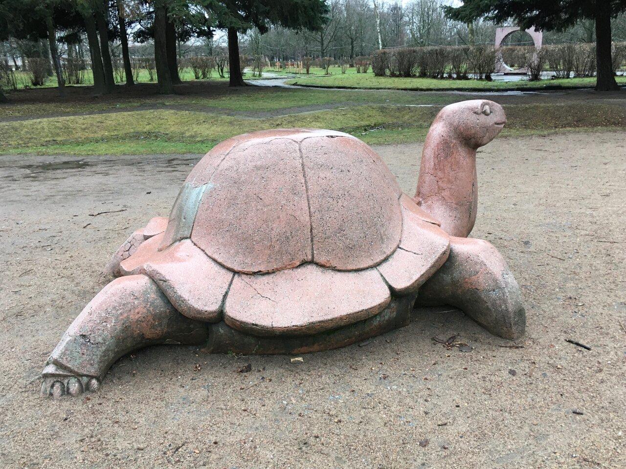 одни самых лимпопо красноярск фото черепахи хиросиме