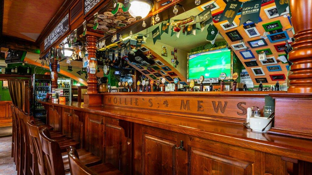 бар, паб — Mollie's Mews — Санкт-Петербург, фото №1