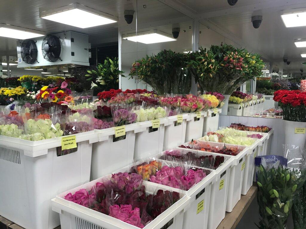 Доставка цветов брянск ценам, цветы интернет