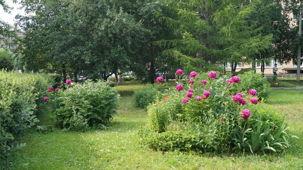 медцентр, клиника — Новая больница, стационар — Екатеринбург, фото №9