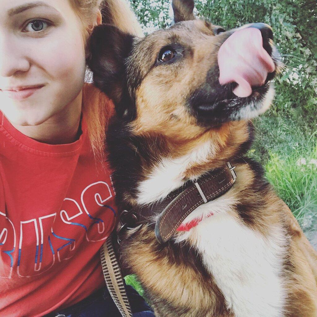 клубы любителей собак в москве