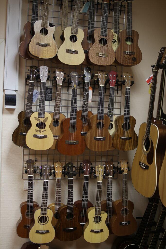 b700f5bfd9672 музыкальный магазин — Музыкальный магазин Другой Звук — Санкт-Петербург,  фото №3