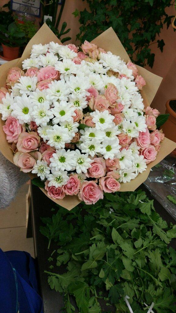 Служба доставки цветов и подарков в калининграде, герберы