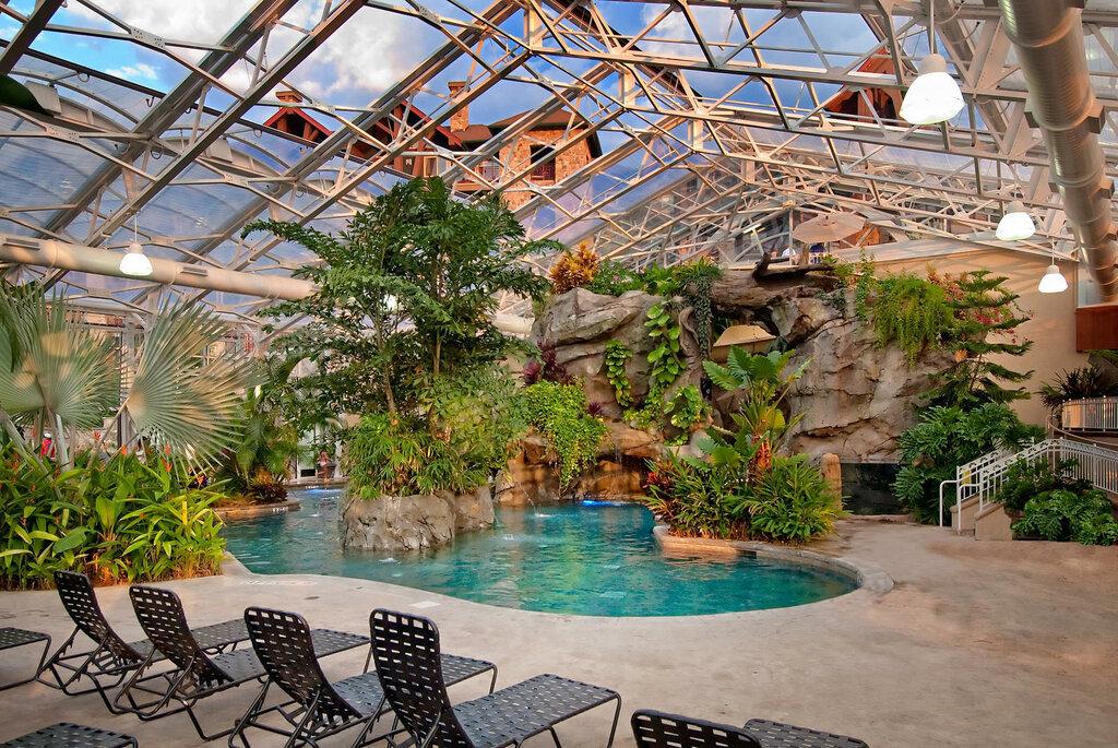 зимние сады с бассейном фото здесь режиме онлайн