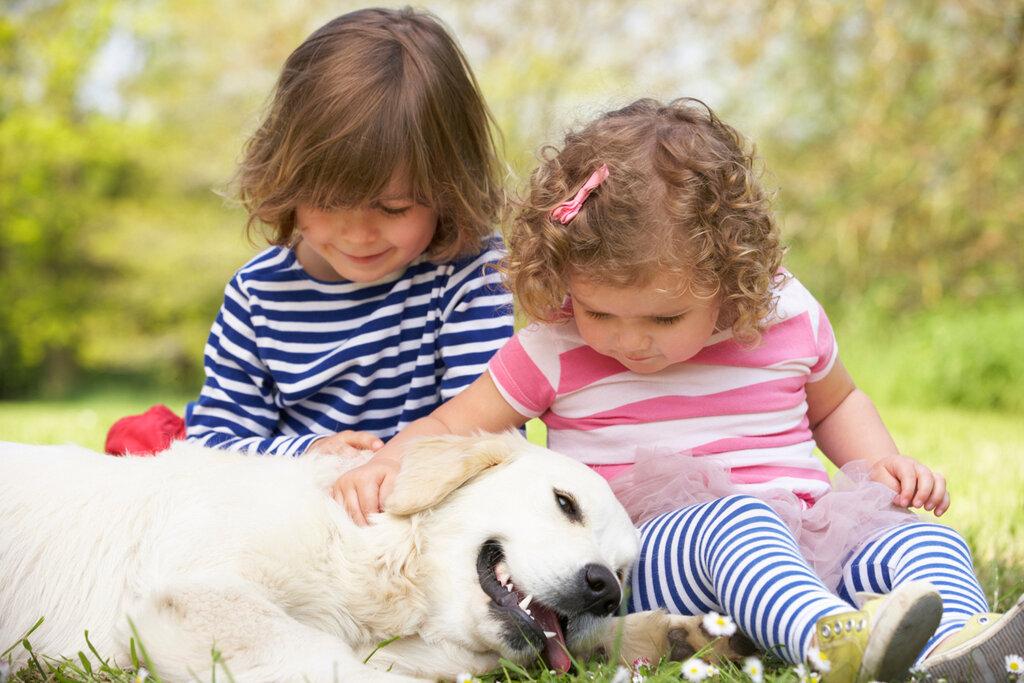 Жнем рождения, картинки трое детей и собака