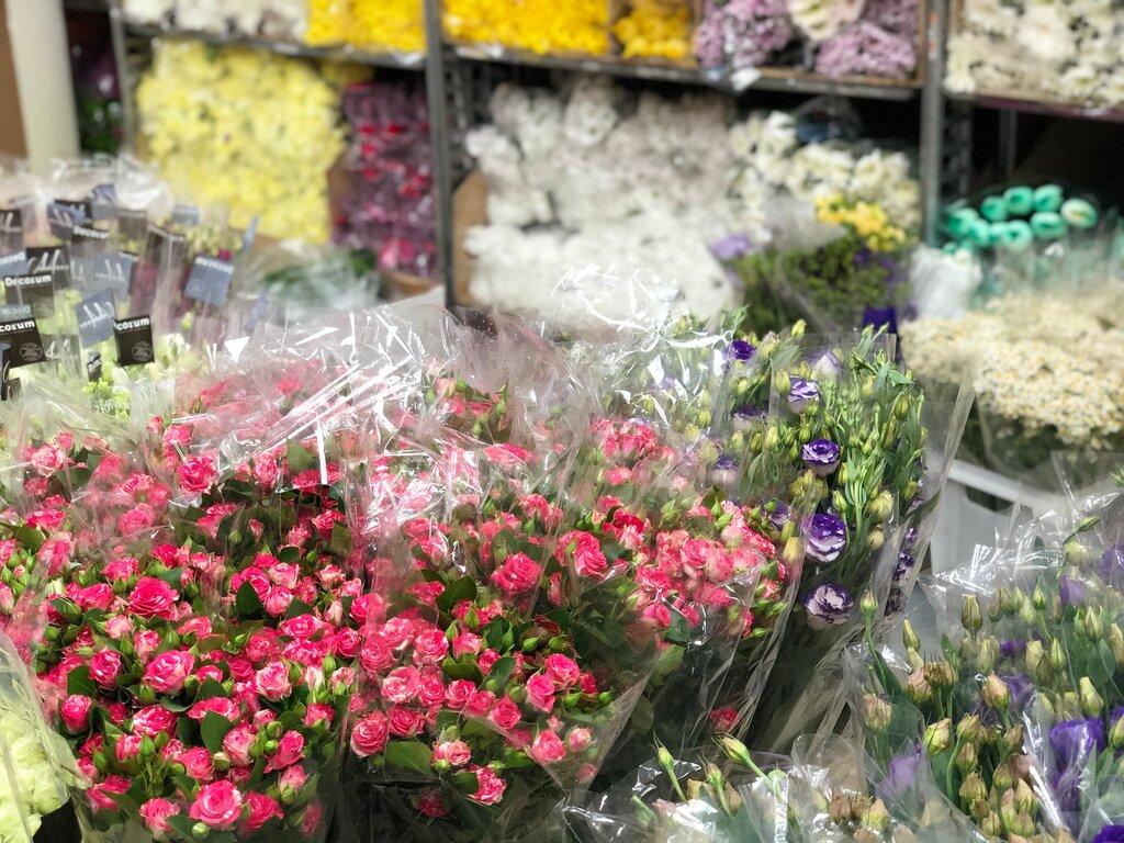 Цветы опт минская область