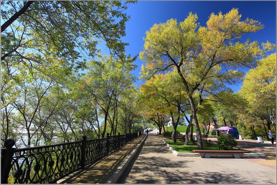сель центральный парк хабаровска фото падчерица