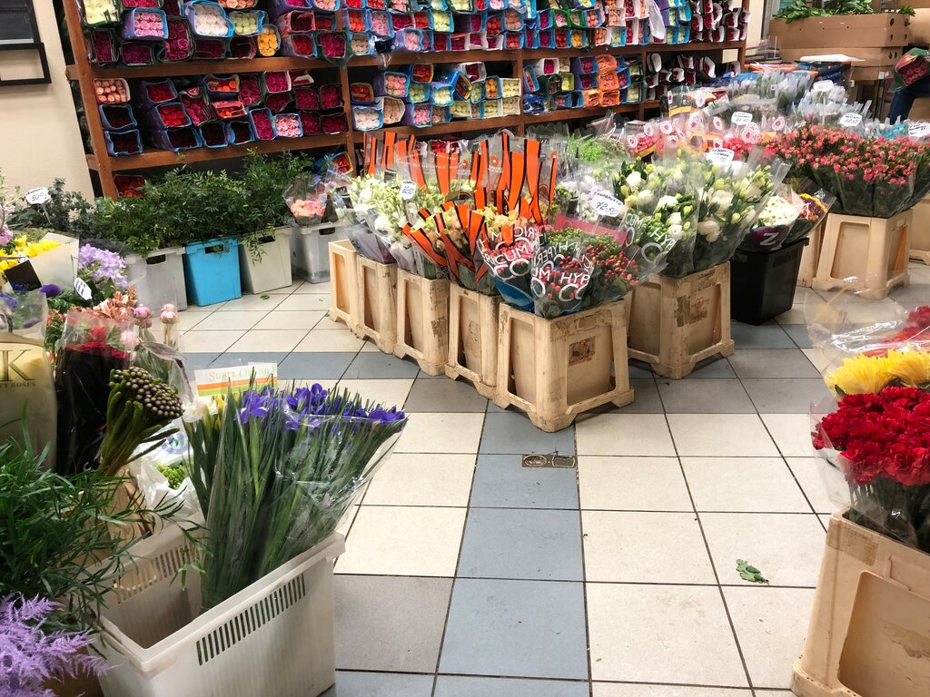 Цветы оптовые цены санкт-петербург, цветы