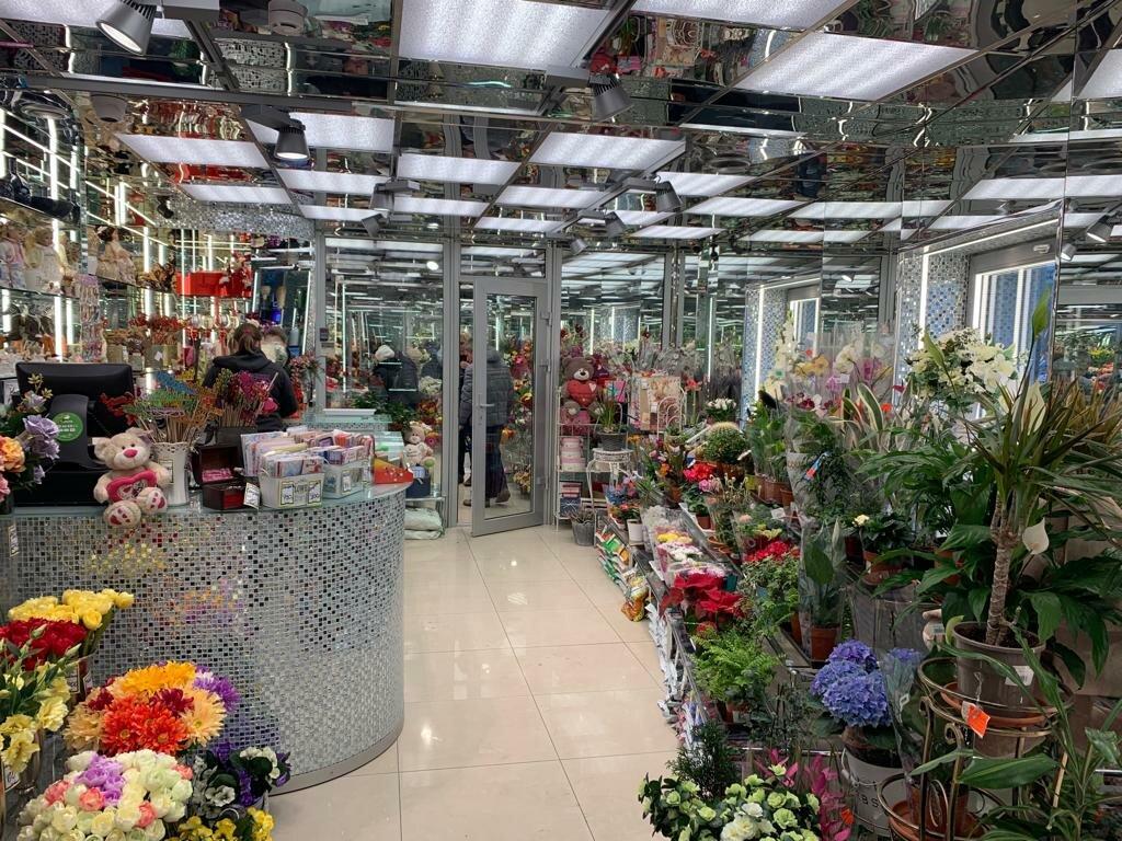 Цветы санкт петербург магазины игрушек