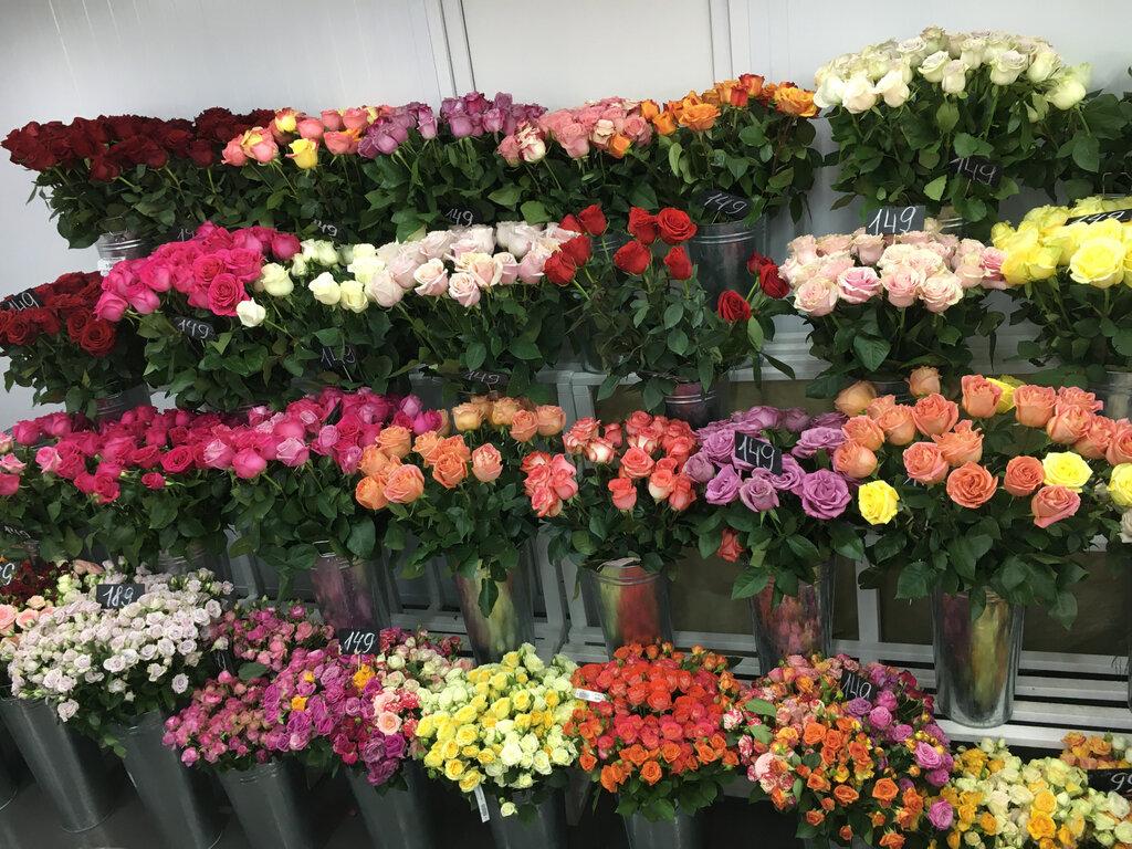 Мокшан оптовая база цветов