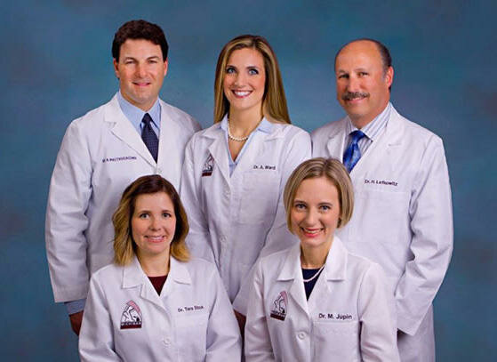 Michigan adults and doctors