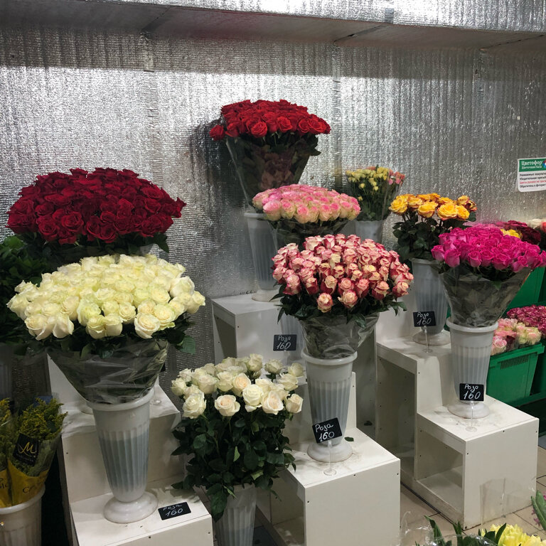 Оптом базы цветы в москва по ювао, букеты космос заказать
