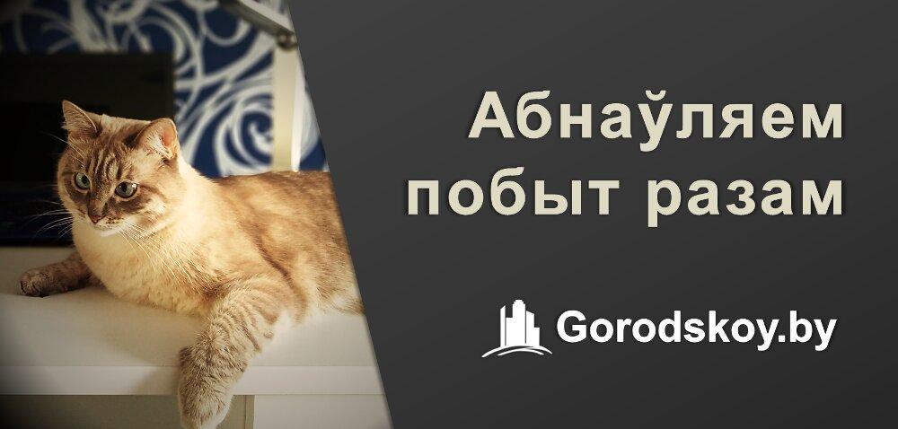информационный интернет-сайт — Gorodskoy - объявления Беларуси — Минская область, фото №2