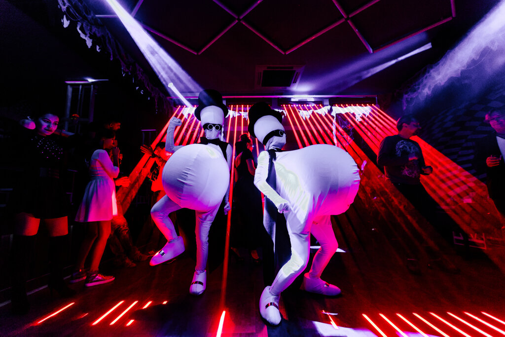 Ночной клуб в ростове на дону на северном динамо волейбольный клуб состав мужчины