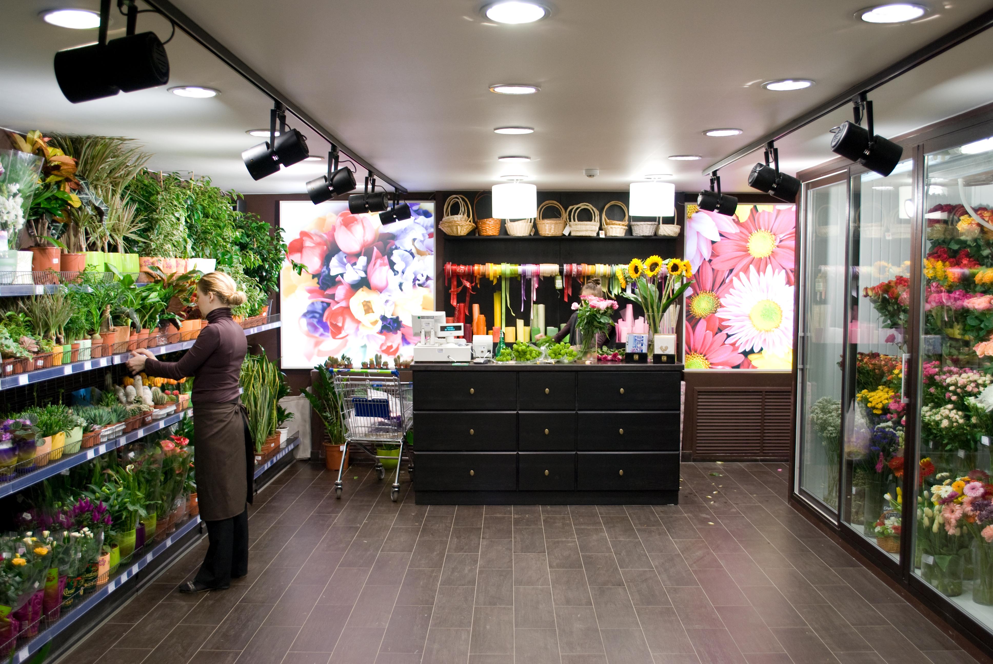 Цветы цветочные магазины