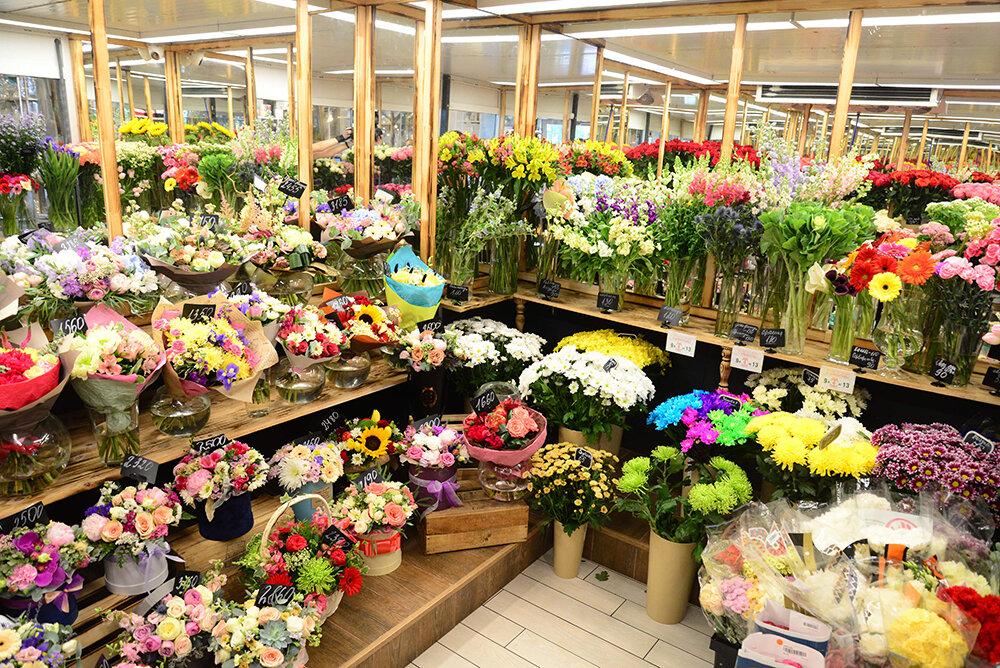 Каталог интернет магазин цветов москва недорого, предложение марта