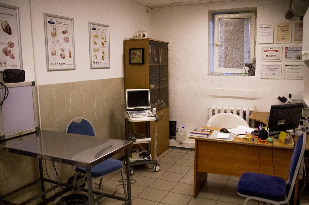 ветеринарная клиника — Ника — Санкт-Петербург, фото №3