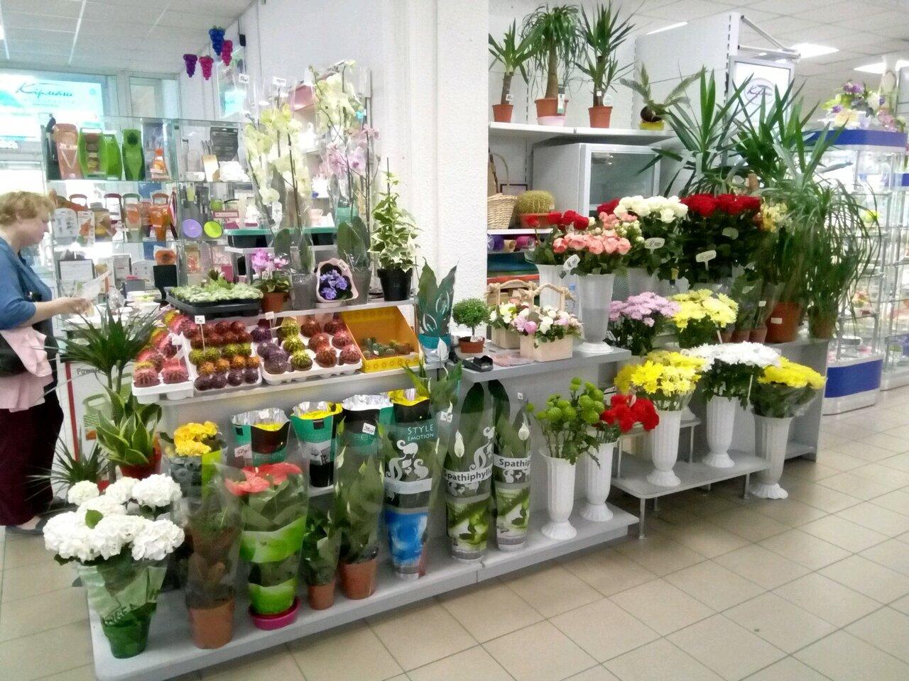Сто Цветов Магазин
