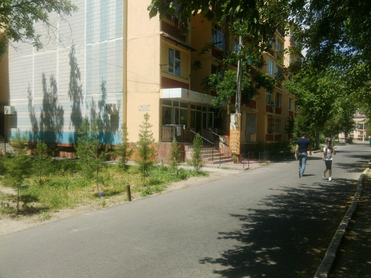 Узбекистан город ташкент массив ясный фото