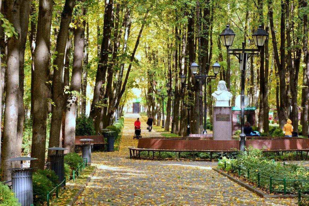 парк культуры и отдыха — Каток с натуральным льдом — Москва, фото №7