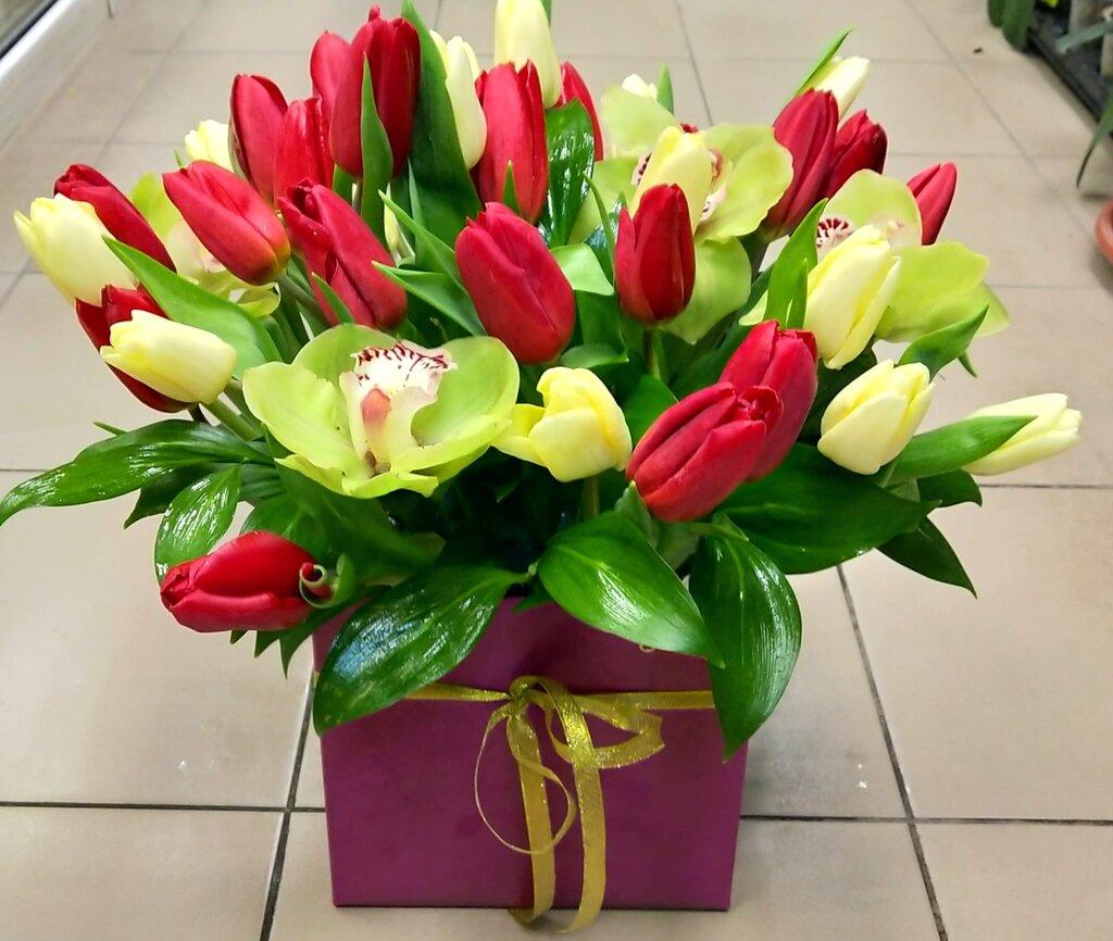 Магазин цветы фрезия, цветов казани