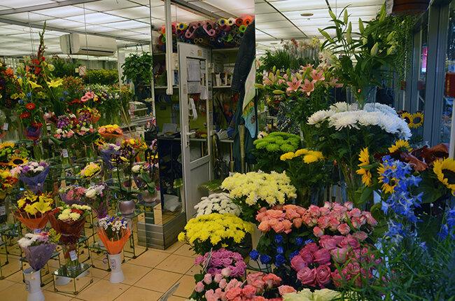Разноцветных, адреса магазины оранж цветов в спб