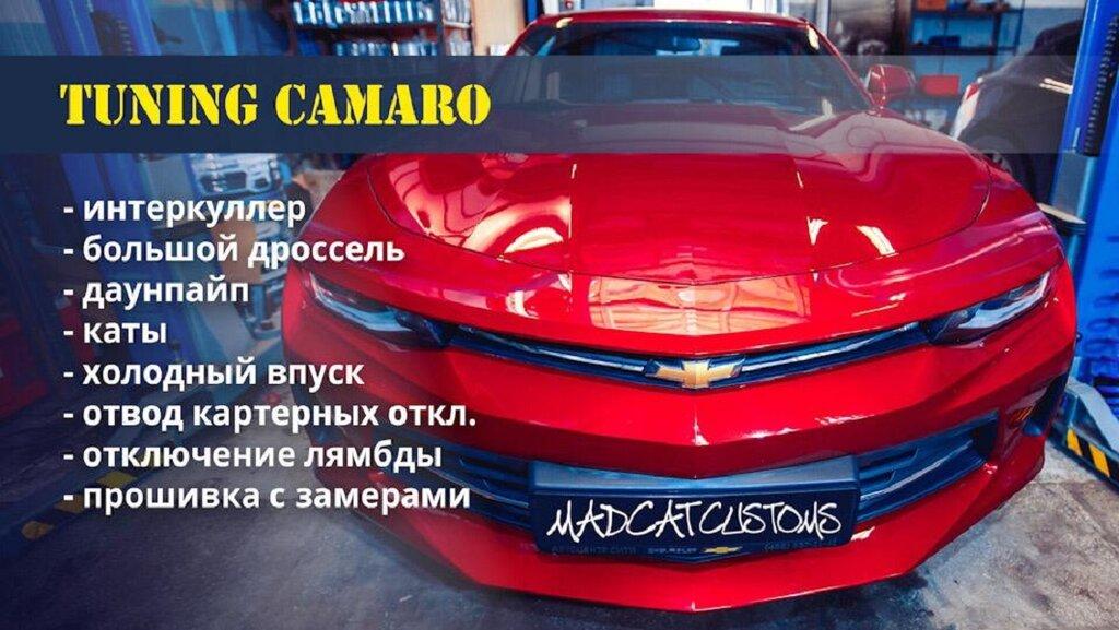 автосервис, автотехцентр — MadCat Customs — Москва, фото №6