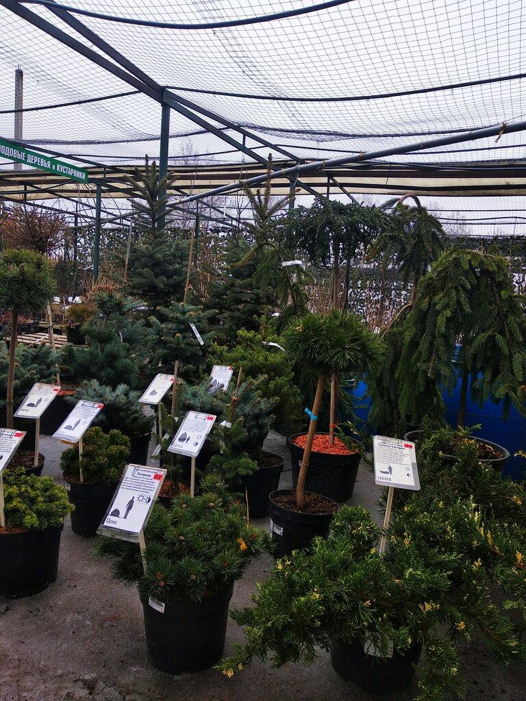 магазин для садоводов — Рузский сад — Москва и Московская область, фото №2