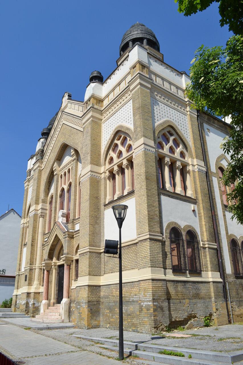 специалисты помогли фото синагоги г ярославля радость для