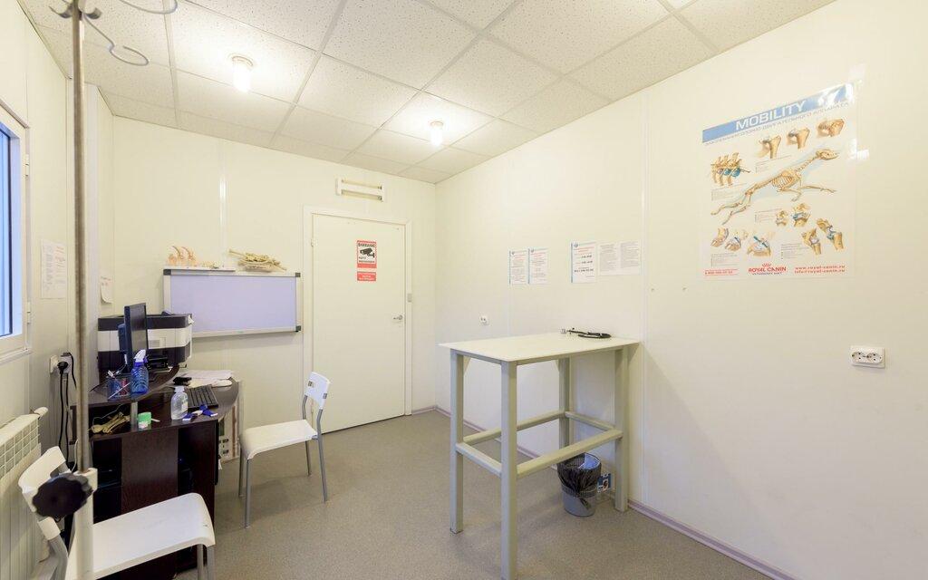 ветеринарная клиника — Ветеринарная клиника онкологии доктора Сотникова — Санкт-Петербург, фото №5