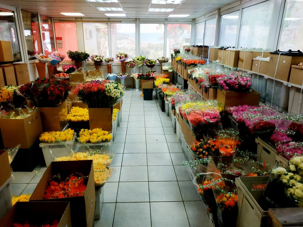 Оптовый магазин цветов в балашиха