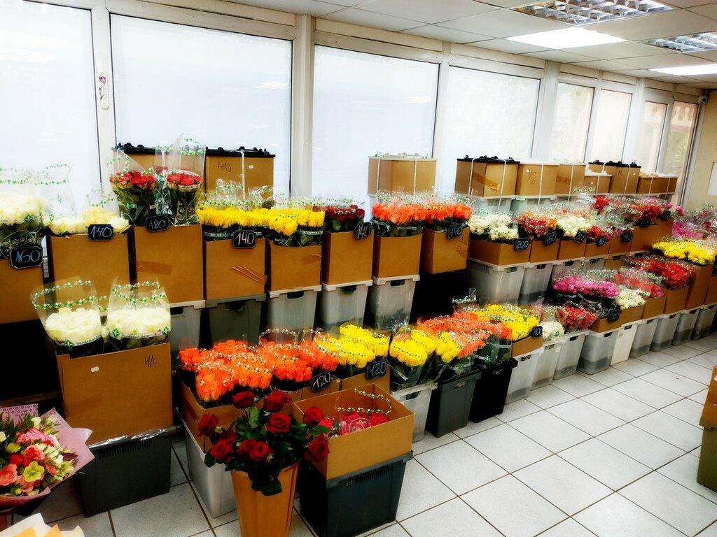 Цветов москва, где купить цветы в златоусте по оптовым ценам